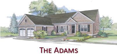 The Adams